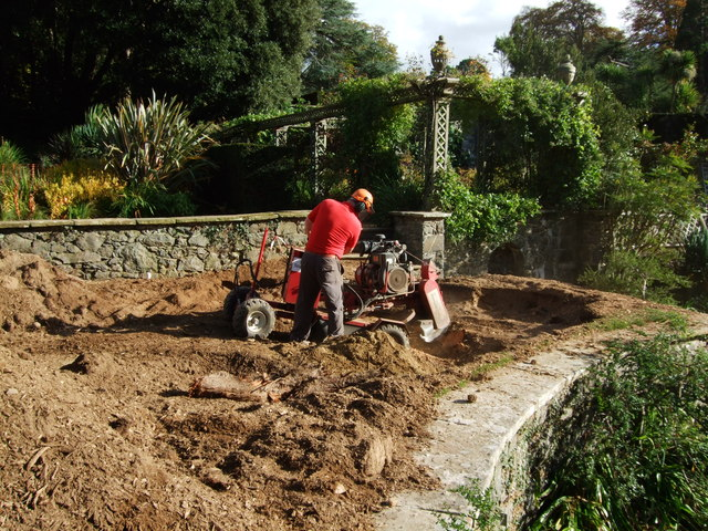 stump grinding corpus christi