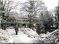 SP2965 : Dogwalking in the snow by the River Avon, Warwick by Robin Stott