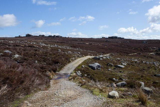 Small stream crossing footpath