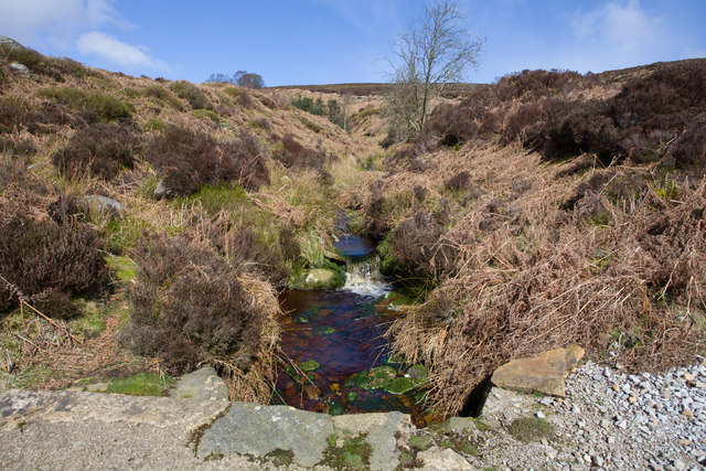 Looking upstream from Great Agill Bottom