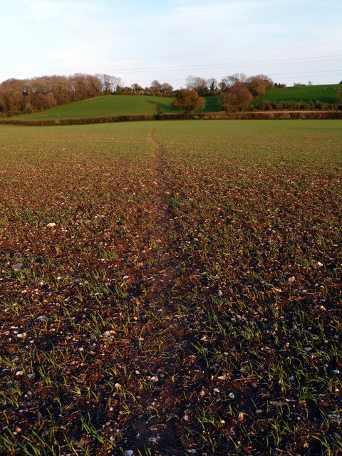 Footpath across a field to Owselbury