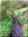 SP0082 : Bartley Brook, Bartley Green by Roy Hughes