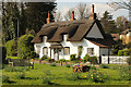 SE9514 : The Cottage : Week 15