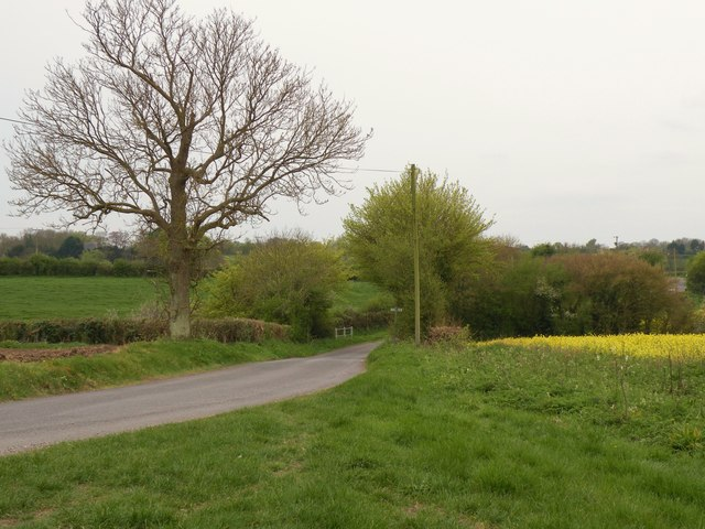 The road from Castle Camps to Camps End