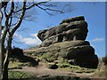 SE2064 : Brimham Rocks : Week 15