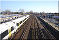 TQ6745 : South Eastern Line, Paddock Wood by N Chadwick