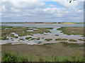 TM2131 : View from Deep Fleet Hide (RSPB) by Roger Jones