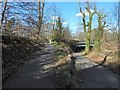 NS5162 : Cycle route at Howford Bridge by Lairich Rig