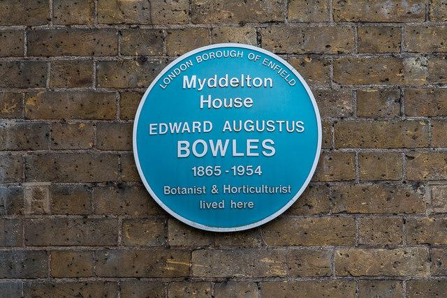 Edward Augustus Bowles blue plaque - Myddelton  House  Edward Augustus Bowles  1865 – 1954  Botanist and Horticulturalist  lived here