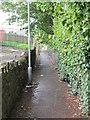 SE0640 : Footpath - Dawson Road by Betty Longbottom