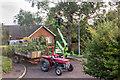 TL4563 : Tree Felling, St. George's Way by Kim Fyson