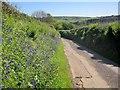 SX3270 : Lane to Bicton Mill by Derek Harper