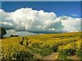 SU2381 : Rain clouds over Bishopstone, Swindon by Brian Robert Marshall