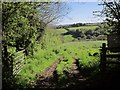 SX3468 : Field above the Lynher valley by Derek Harper