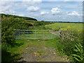 TL1094 : Double gates on a field entrance near Elton by Richard Humphrey