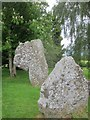 ST5963 : The Cove, neolithic stones (ca 2,500-2,000 BC) adjacent to the churchyard in Stanton Drew by Dr Duncan Pepper