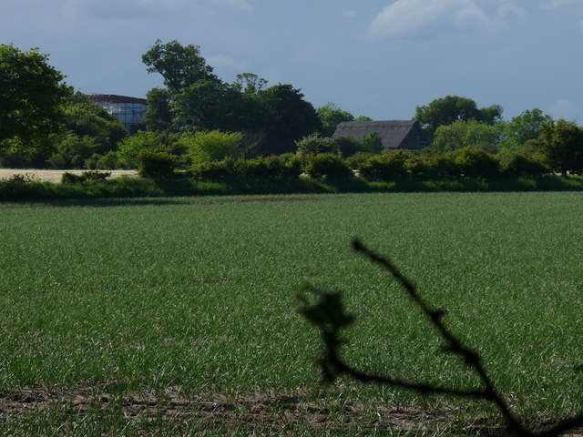 While you can (8): Across the fields to Upper Abbey Farm