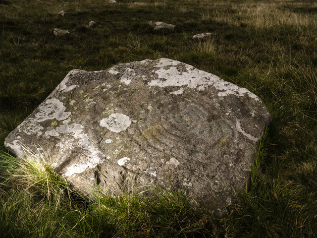 Cup and Ring marked rock, Cambret Hill