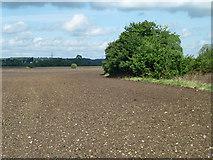 SP9321 : Brown field near Mayflower Farm by Robin Webster