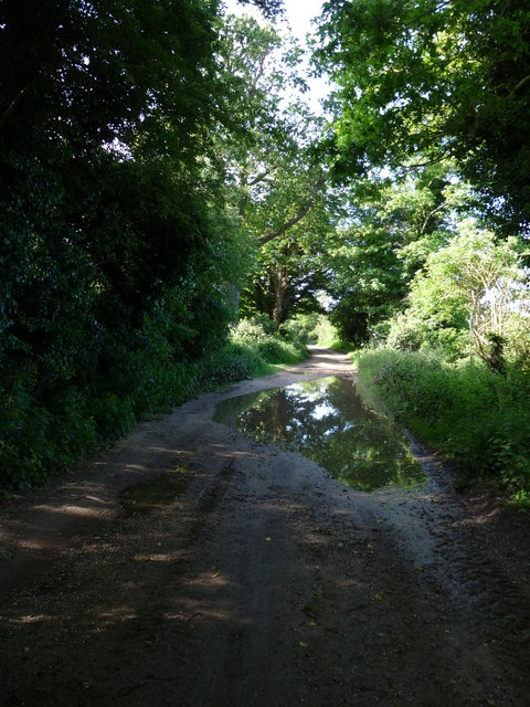 "While you can (11): The ""Back Road"" passing Upper Abbey Farm"