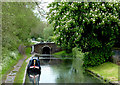 SO8898 : Staffordshire and Worcestershire Canal at Compton, Wolverhampton by Roger  Kidd