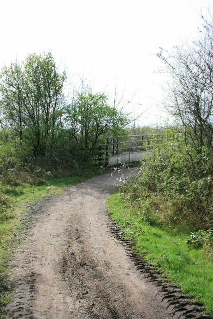 Walton Heath bridle bridge over M25: north side