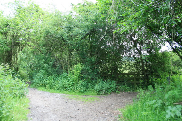 Junction of bridleways