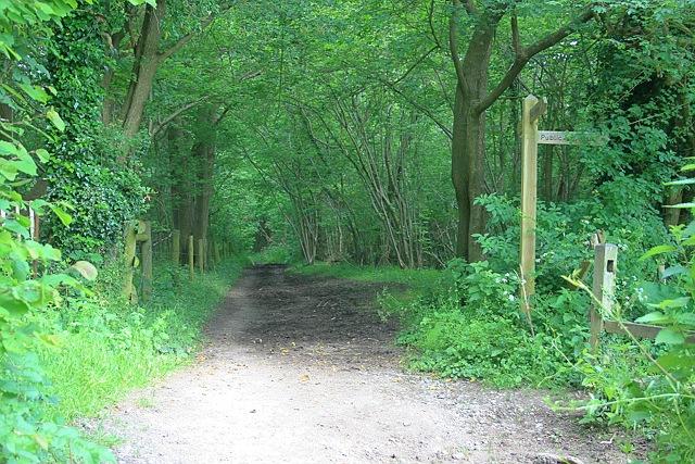 Langley Lane