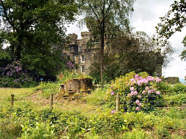 Wray Castle from Watbarrow Wood