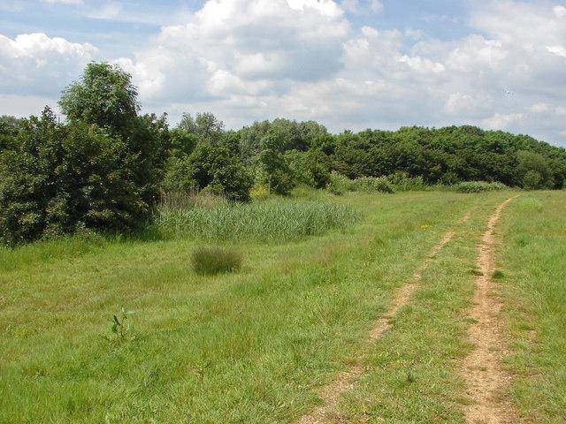 The Heathrow Biodiversity Site