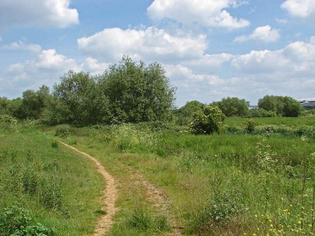 Scrubland near Heathrow