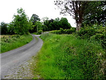 G9523 : Road at Cavan by Kenneth  Allen