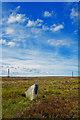 NZ8603 : Parsley Beck Rigg View by Scott Robinson