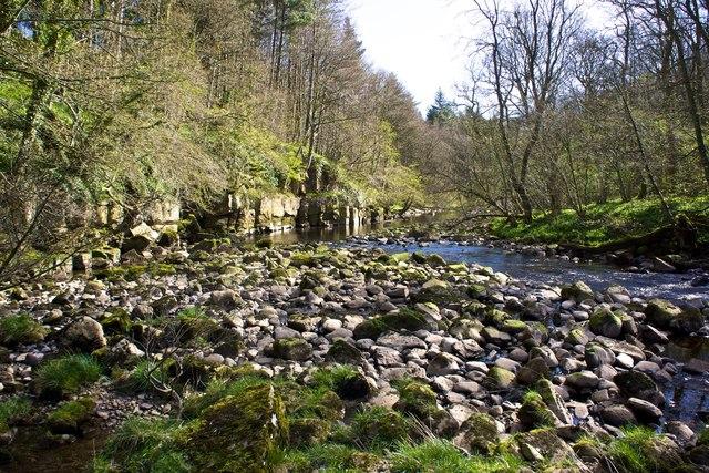 River Greta, Nr Brignall