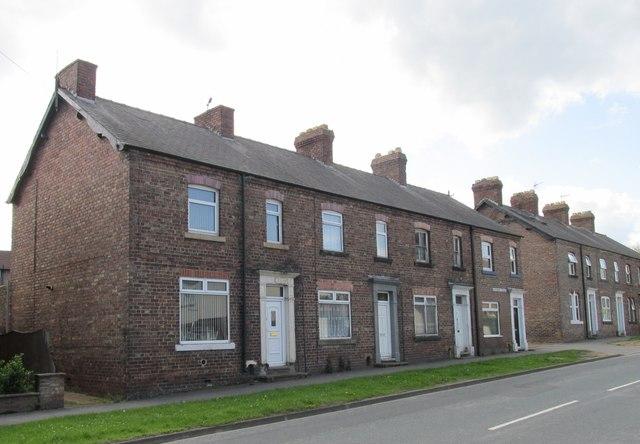 Alexandra Terrace, South End  #1