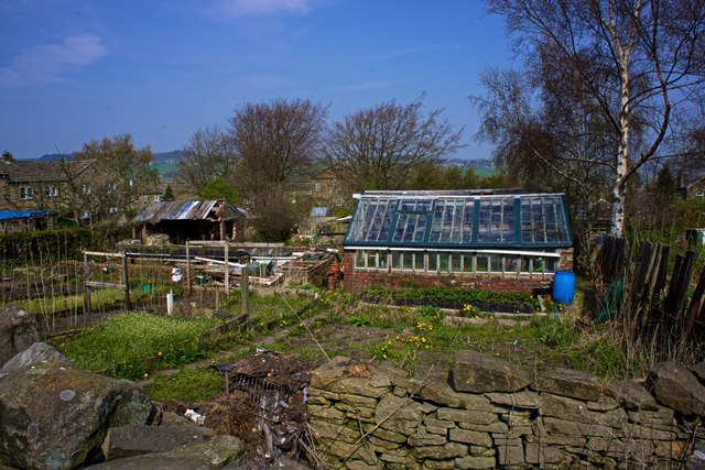 Allotments, Haworth