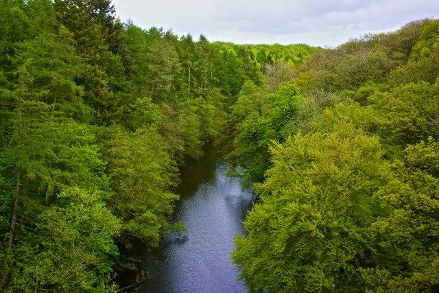 River Nidd, Nidd Viaduct