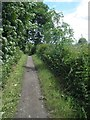 SE2803 : Trans Pennine Trail (TPT) near Silkstone Common by Steve  Fareham