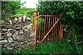 J3452 : BWC gate near Ballynahinch by Rossographer