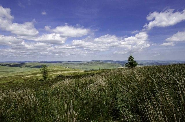 Cambret Moorland