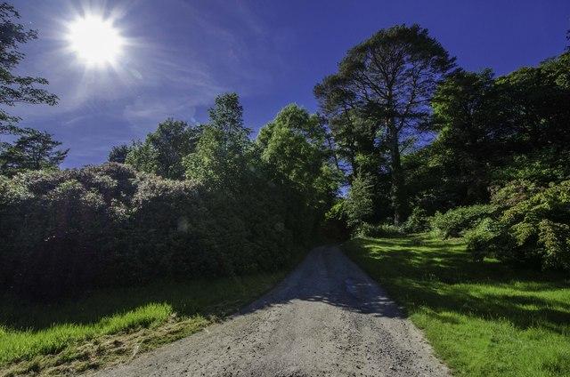 Road at Ardwall