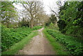 TR1534 : Royal Military Canal Path by N Chadwick