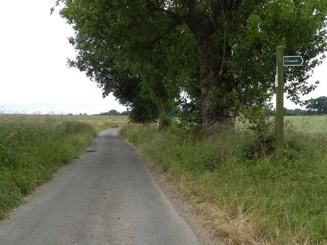 Bull's Road near Hemingstone