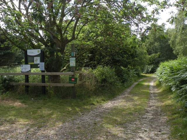 Bridleway at Walberswick National Nature Reserve