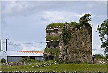M4142 : Castles of Connacht: Tawnaghmore, Galway (1) by Mike Searle