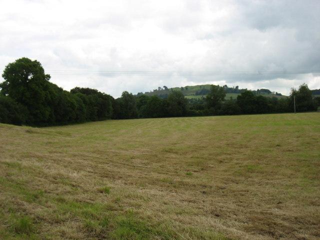 Farmland near Oldcastle