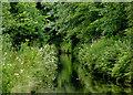 SJ9003 : Marsh Lane Narrows at Fordhouses, Wolverhampton : Week 28