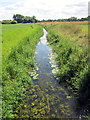 SJ4568 : The River Gowy near Guilden Sutton by Jeff Buck