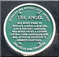 Photo of The Angel, Beverley and Daniel Boyes green plaque