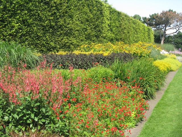 Royal Botanic Garden Edinburgh M J Richardson Cc By Sa 2 0 Geograph Britain And Ireland